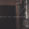 "Warm Audio音乐现场:WA-47jr Black FET  - Caleb Lovely ""Smile"""